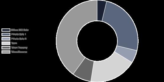 Распределение токенов STPT проекта STP Network согласно отчету биржи криптовалют Binance