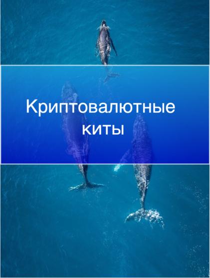 Криптовалютные киты: кто самые богатые люди из криптовалютных инвесторов