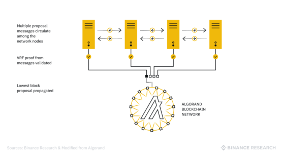 crypto algo криптовалюта блокчейн Algorand binance