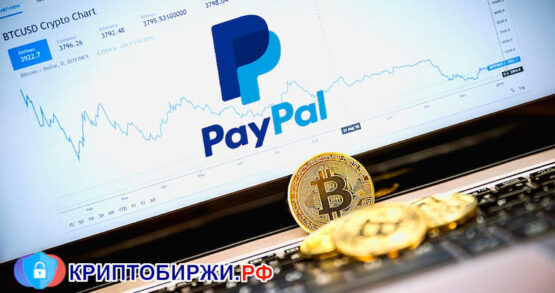 PayPal разрешил покупать криптовалюты жителям США и расширил лимит покупок до $20 000 в неделю