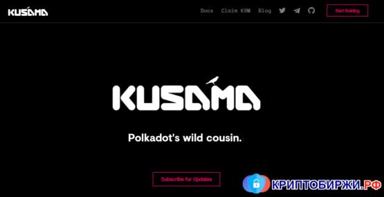 Kusama Netowrk: сходства и отличия с Polkadot