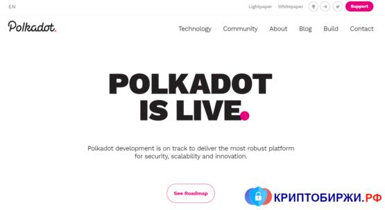 Так выглядит официальный сайт криптовалюты Polkadot в ноябре 2020 года