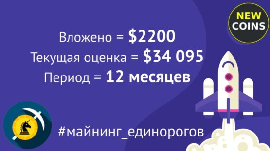 "Итоги инвестиций по портфелю ""Майнинг единорогов"" — июнь 2021 (эксперименту год!)"